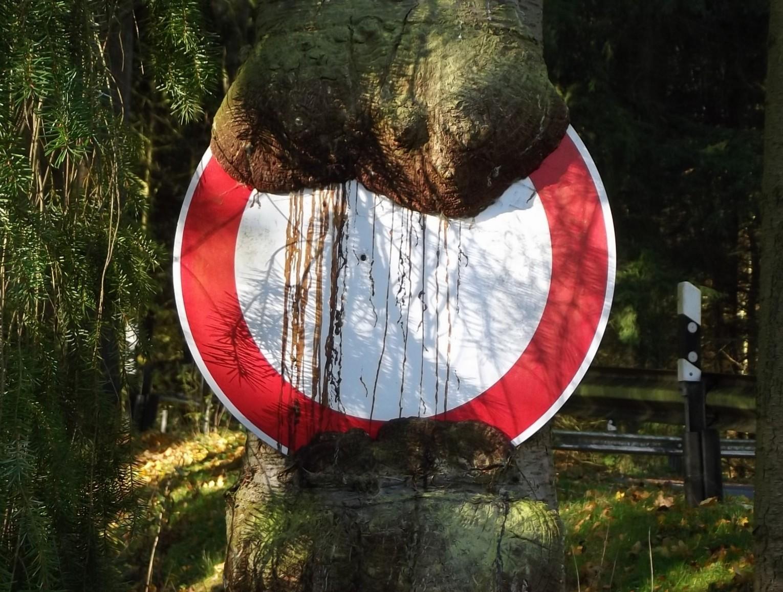 Baum frisst Schild Einbahnstraße Fichte Überwallung