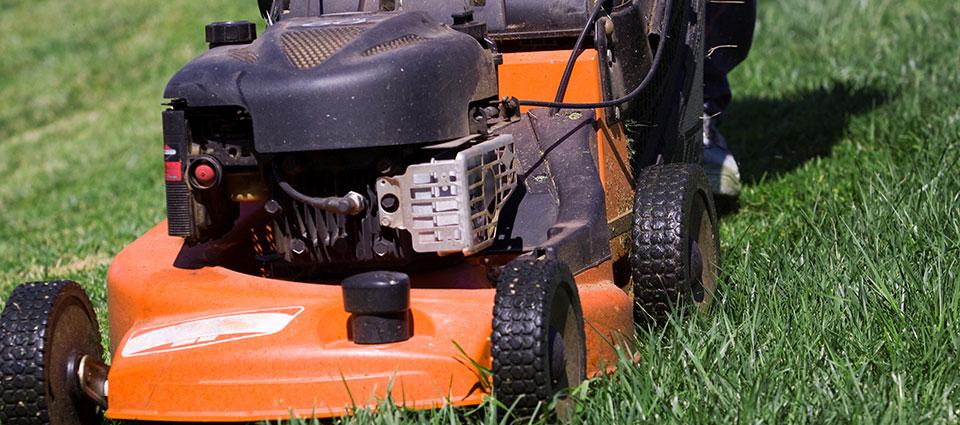 Rasenmäher auf Rasen Wiese